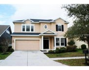 13308 Tiger Lilly Ln, Tampa image