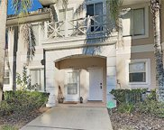 18185 Paradise Point Drive, Tampa image