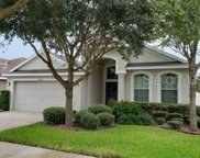 12732 Whitney Meadow Way, Riverview image