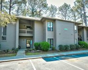 1101 Indian Wells Ct. Unit 1101, Murrells Inlet image