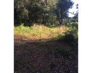 HIGHWAY 132, Live Oak image