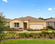 17449 E Blazing Star Circle W, Clermont image