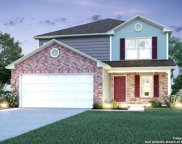 10422 Big Spring Lane, San Antonio image