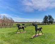 240 Southern C S Trail, Summerfield image