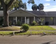 7009 Applewood Court, Tampa image