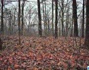 7234 Crown Ridge Dr Unit 7, Trussville image