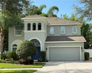 5306 Green Oasis Drive, Dover image
