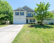 3436  Pickney Bluffs, Fort Mill image