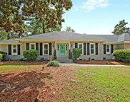 110 Axtell Drive, Summerville image