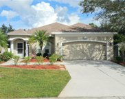 14225 Cattle Egret Place, Lakewood Ranch image