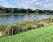 13394 Silktail Dr, Naples image