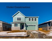 1788 Branching Canopy Dr, Windsor image
