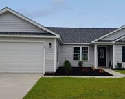 1320 Red Head Ct., Conway image