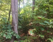 Lot 34 Woodchuck Dr, Sevierville image