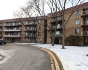 5400 Astor Lane Unit #204, Rolling Meadows image