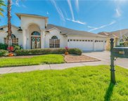 10113 Queens Park Drive, Tampa image