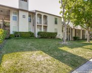 8702 Village Dr Unit 1301, San Antonio image