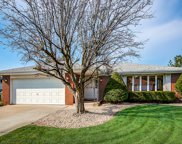 7420 Cashew Drive, Orland Park image