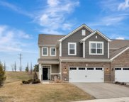 16164 W Coneflower Drive, Lockport image