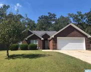 21717 Oakland Meadows Drive, Athens image