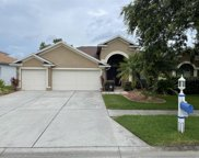 19219 Inlet Cove Court, Lutz image