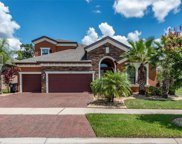 13738 Moonstone Canyon Drive, Riverview image