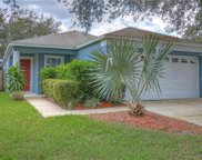 414 Maple Pointe Drive, Seffner image
