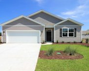 335 Forestbrook Cove Circle, Myrtle Beach image
