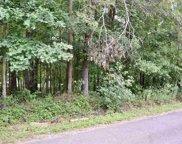 Chestnut Road, Landrum image