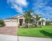 10006 Lovegrass Lane, Orlando image