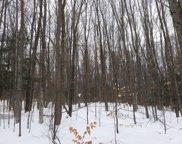 Beech Trail Unit Parcel 13, Wolverine image