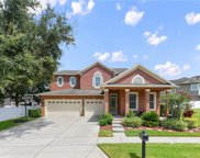 13513 Riggs Way, Windermere image