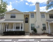 12522 Castle Hill Dr, Tampa image