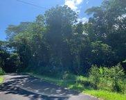 15-2728 N ONO ST, PAHOA image