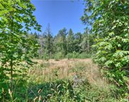 58 xx Miller Rd, Olympia image