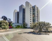 311 69th Ave. N Unit 503, Myrtle Beach image