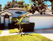 642 Coral Trace Boulevard, Edgewater image