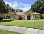 17414 Tailfeather Court, Clermont image