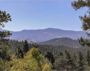 30898 Witteman Road, Conifer image