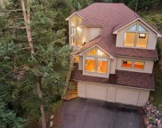 7102 Pinewood Drive, Evergreen image
