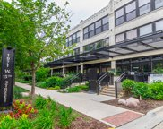 1071 West 15Th Street Unit 203, Chicago image