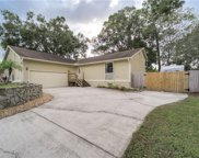 3829 Biscay Place, Land O' Lakes image