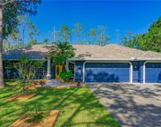 339 Ranch Road, Tarpon Springs image