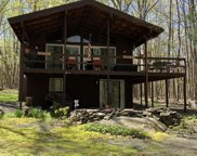 224 Basswood Dr, Lords Valley image