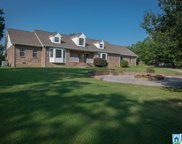 135 Hickory Ln, Odenville image
