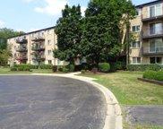 2420 E Brandenberry Court Unit #2L, Arlington Heights image