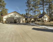 25002 Chandler Drive, Custer image