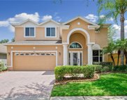 5112 Mayfair Park Court, Tampa image
