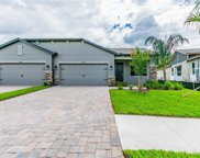 19357 Hawk Valley Drive, Tampa image