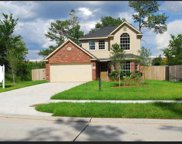 25822 Forest Springs Lake, Spring image
